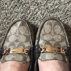 COACH NEW YORK OLIVE SHOES